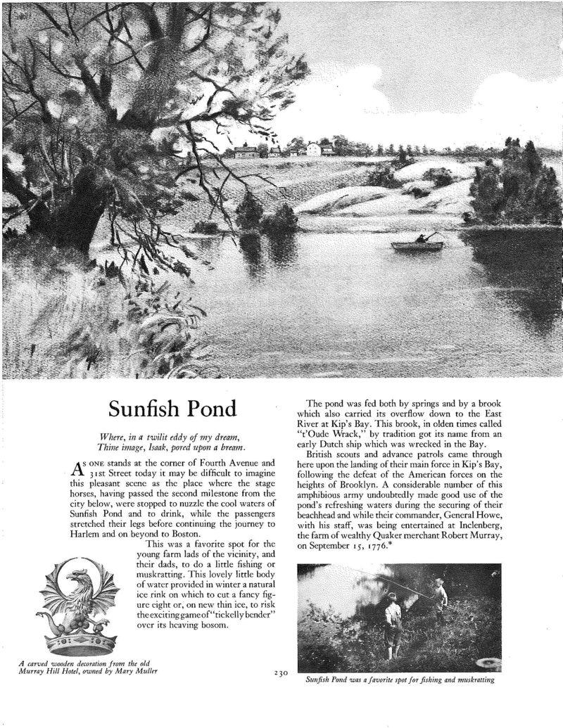 Sunfish Pond_Page_1